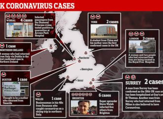First UK coronavirus death is Diamond Princess ship passenger